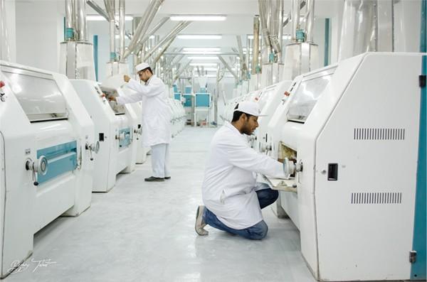 شركة حورس للحبوب ومنتجاتها - مطحن دقيق وعلف | مطاحن دقيق وعلف